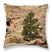 Amazing Life On The Sandstone Cliffs Throw Pillow