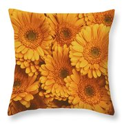 Amber Soaked Throw Pillow