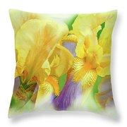 Amenti Yellow Iris Flowers Throw Pillow