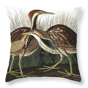 American Bittern, Botaurus Lentiginosus By Audubon Throw Pillow