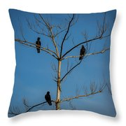 American Crows In Bare Tree Throw Pillow