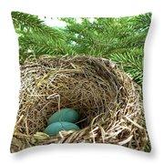 American Robin Nest Throw Pillow