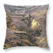 Amidon April Prairie Reverie Throw Pillow
