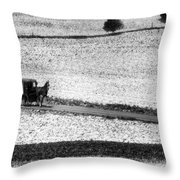 Amish Country Lancaster Pennsylvania Bw Throw Pillow