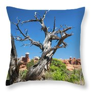 Ancient Dead Juniper With Character Throw Pillow