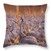 And One Sings Out Throw Pillow