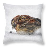 And These Thy Gifts  Throw Pillow