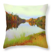 Androscoggin River, 13 Mile Woods Throw Pillow