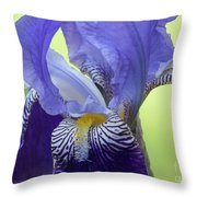 Angie's Iris Throw Pillow