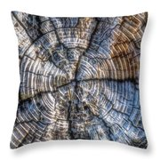 Annual Rings Throw Pillow