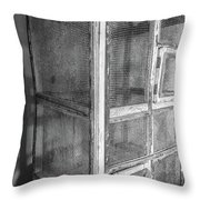 Antique Bird Cage Throw Pillow