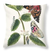 Antique Watercolor Illustration Of Nettle Butterfly In Various Life Stages Published In 1824 By M.p. Throw Pillow