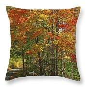 Appalachian Backroads Throw Pillow
