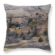 April Badlands Near Amidon Throw Pillow