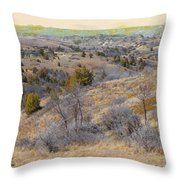 April Prairie Reverie Throw Pillow