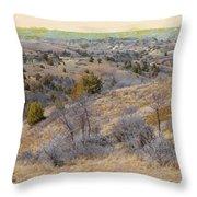 April Prairie Reverie Throw Pillow