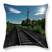 Arctic Express Throw Pillow