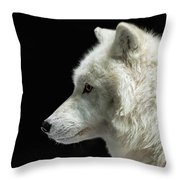 Arctic Wolf In Profile Throw Pillow by Susan Rissi Tregoning