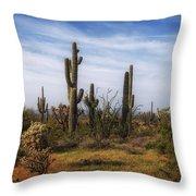 Arizona Dreaming Throw Pillow