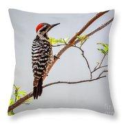 Arizona Ladderback Woodpecker Throw Pillow
