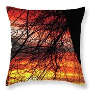 Arizona Sunset Through Branches Throw Pillow