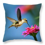 Art Of Hummingbird Flight Throw Pillow