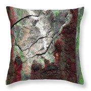 Art Print Rust 7 Throw Pillow by Harry Gruenert