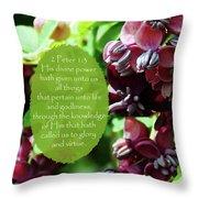 Chocolate Divine - Verse Throw Pillow