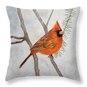 Fire On Ice Throw Pillow