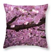 Cherry Blossom Tree Panorama Throw Pillow