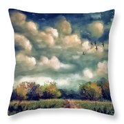 As August Slips Into Autumn Throw Pillow by Lois Bryan