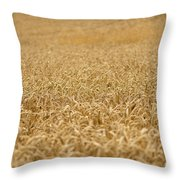 A Field Of Wheat Throw Pillow