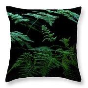 Asparagus Fern Throw Pillow