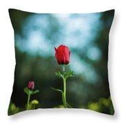 Aspecial Flower  Throw Pillow
