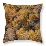 Aspen Autumn Leaves Throw Pillow