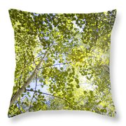 Aspen Canopy With Sun Flare Throw Pillow