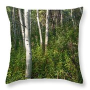 Aspen Solitude Throw Pillow
