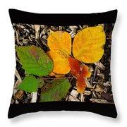 Assiniboine Forest Floor No.1 Throw Pillow
