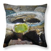 August Ring Throw Pillow