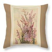 Australian Wild Flowers  8 Throw Pillow