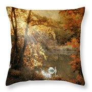 Autumn Afterglow Throw Pillow
