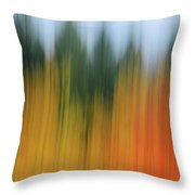 Autumn And Evergreen Throw Pillow