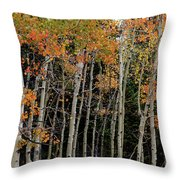 Autumn As The Seasons Change Throw Pillow