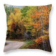Autumn Buck  Throw Pillow by Patti Deters