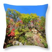 Autumn Color On Newfound Gap Road In Smoky Mountains National Park Throw Pillow