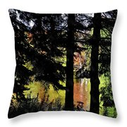 Autumn Colors At The Spa  Throw Pillow