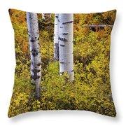 Autumn Contrasts Throw Pillow by John De Bord