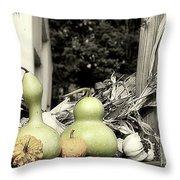 Autumn Farm Stand Throw Pillow