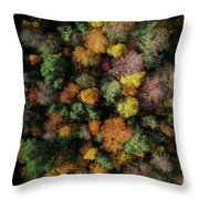 Autumn Forest - Aerial Photography Throw Pillow