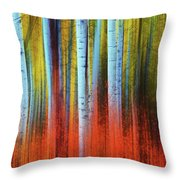 Autumn In Color Throw Pillow by John De Bord
